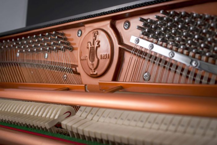122 Detail 3 frame 2 web 700x467 - خرید پیانو فویریخ مدل 122 Feurich