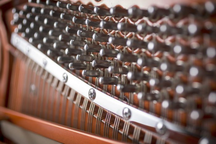 122 Detail 6 pins web 700x467 - خرید پیانو فویریخ مدل 122 Feurich